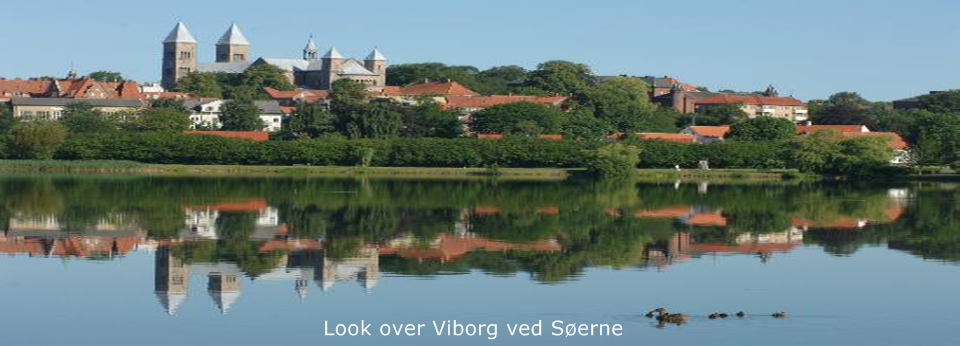 Look over Viborg_960x346